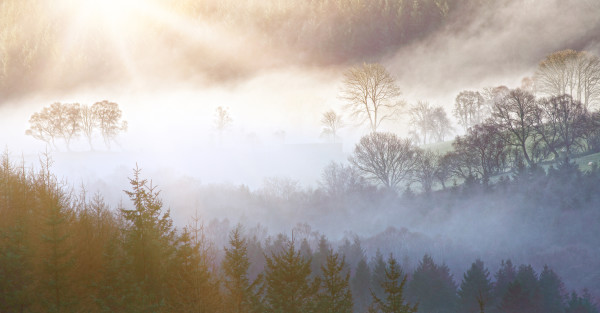 http://www.dreamstime.com/royalty-free-stock-photo-morning-landscape-beautiful-layers-mist-over-trees-image39441825